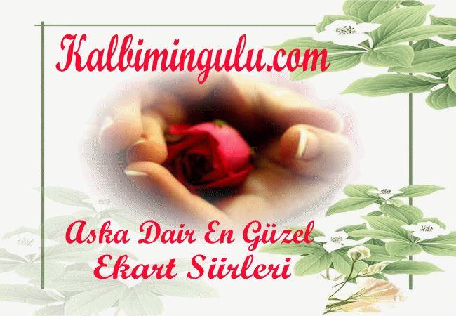 Ekart kalbimingulu.com